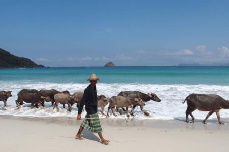 https://archipel360.com/wp-content/uploads/2018/12/archipel360-Lombok-Kuta.png