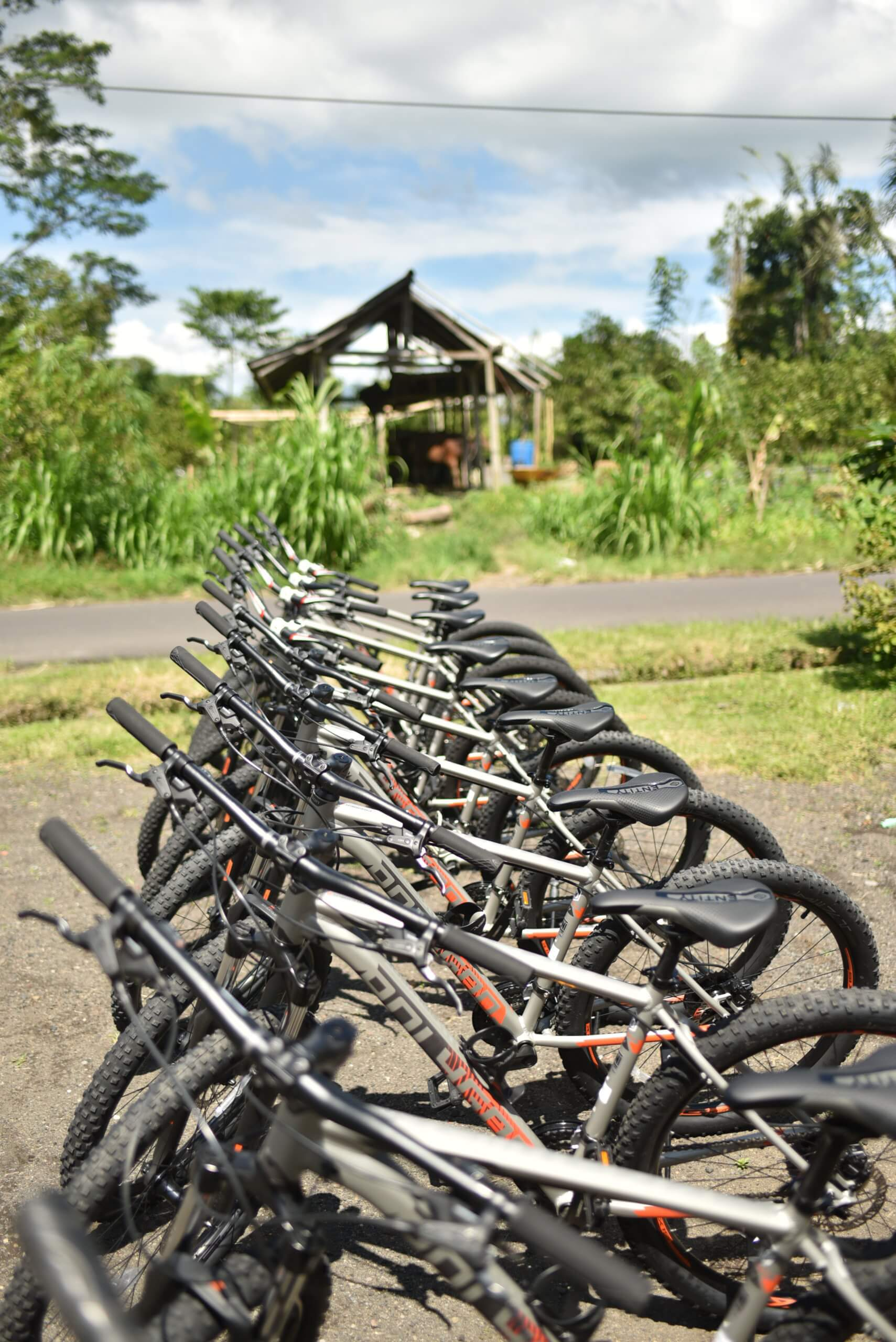 Location de vélos Ubud à Bali