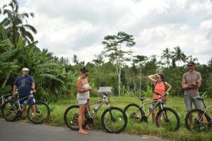 Ballade à vélo au milieu des rizières à Bali
