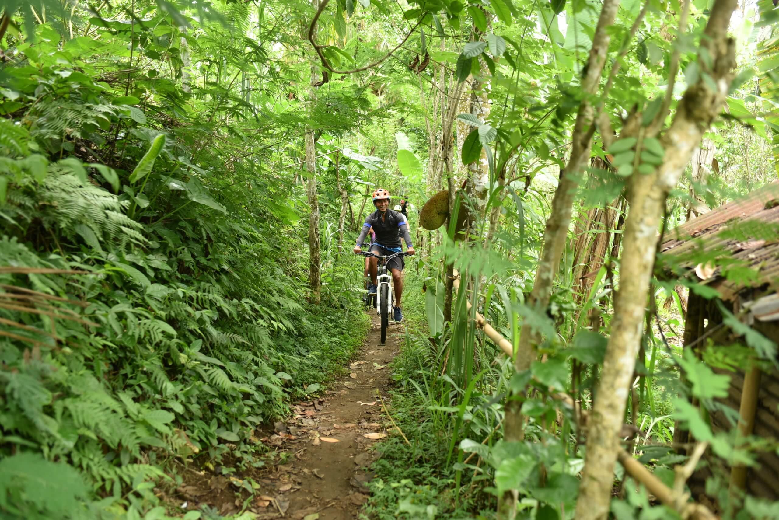 Ballade en vélo au milieu de la végétation