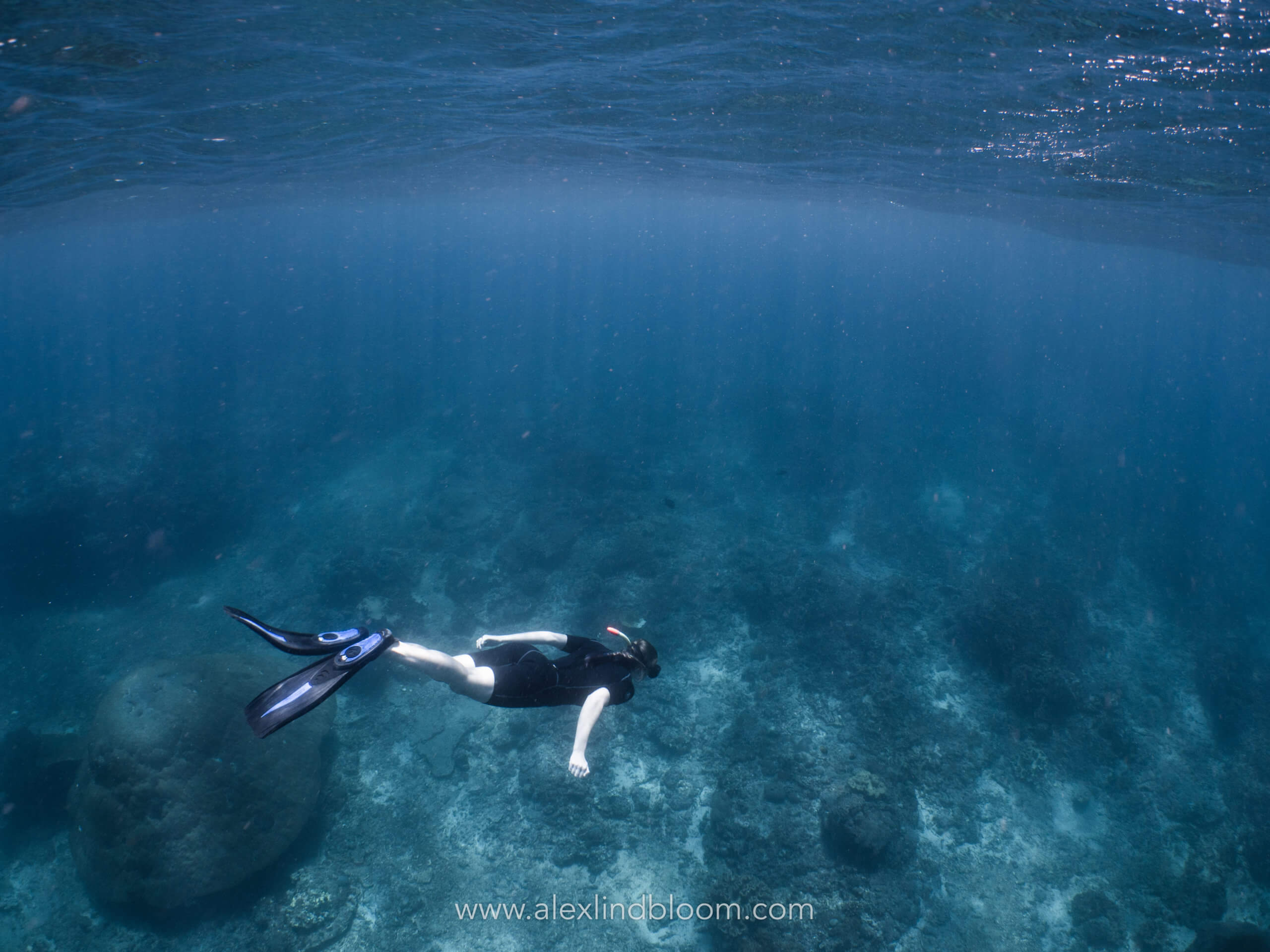 Snorkling en toute liberté