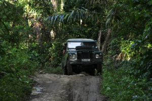 Jeep au milieu de la jungle