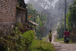 Maison locale de Sawan à Bali