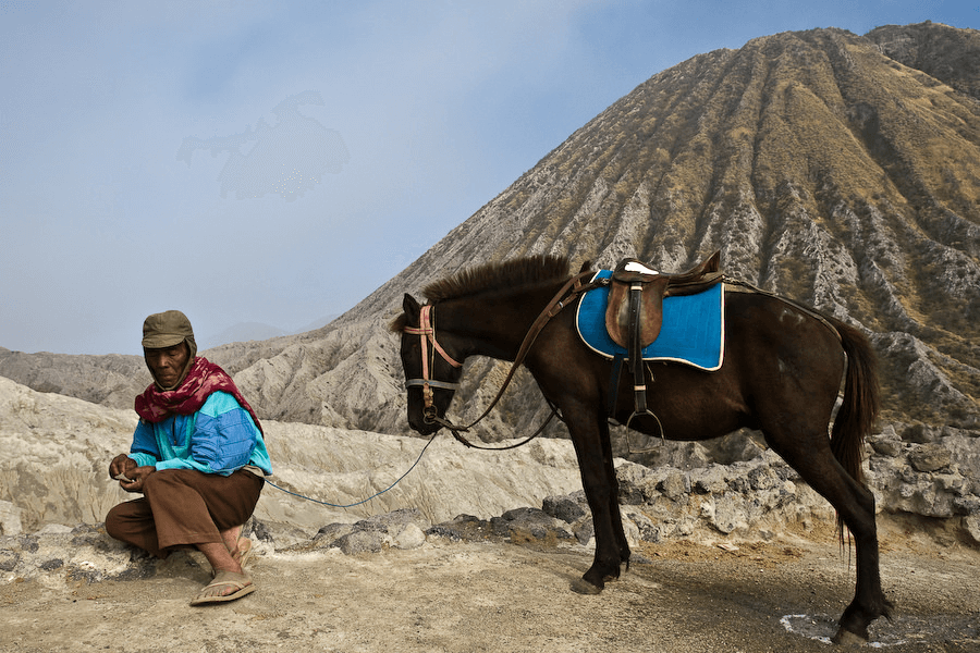 Ascension du mont Bromo à Cheval