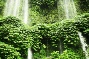 Cascades de Benang Kelambu à Lombok en Indonesie