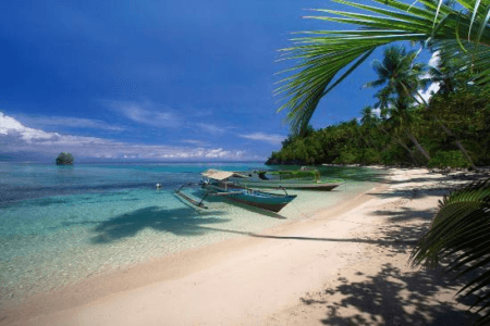 https://archipel360.com/wp-content/uploads/2019/01/archipel360-Sulawesi-Togian-.png