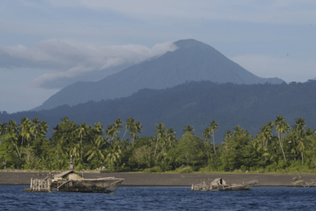 Parc National de Tongkoko nord Sulawesi en Indonesie