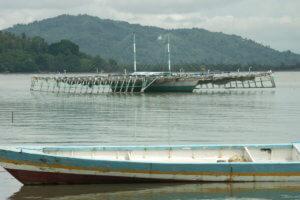 Bagang (bateau traditionnelle de Palopo du sud Sulawesi)