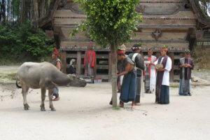 Peuple Toba Batak ile de samosir north Sumatra