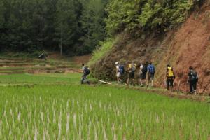 Trekking au pays Toraja
