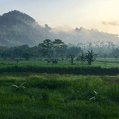 Paysage d'Indonésie