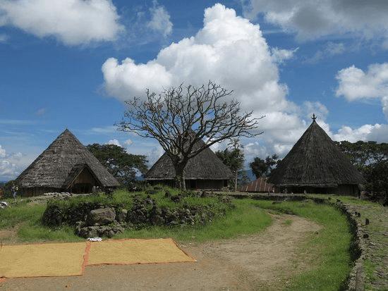 Village traditionnel de Ruteng Puu à Flores