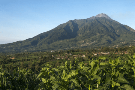 Volcan Merapi du village de Selo à Java en Indonesie