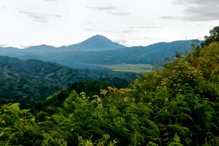 Parc national de Kerinci Seblat à l'ouest de Sumatra en Indonésie