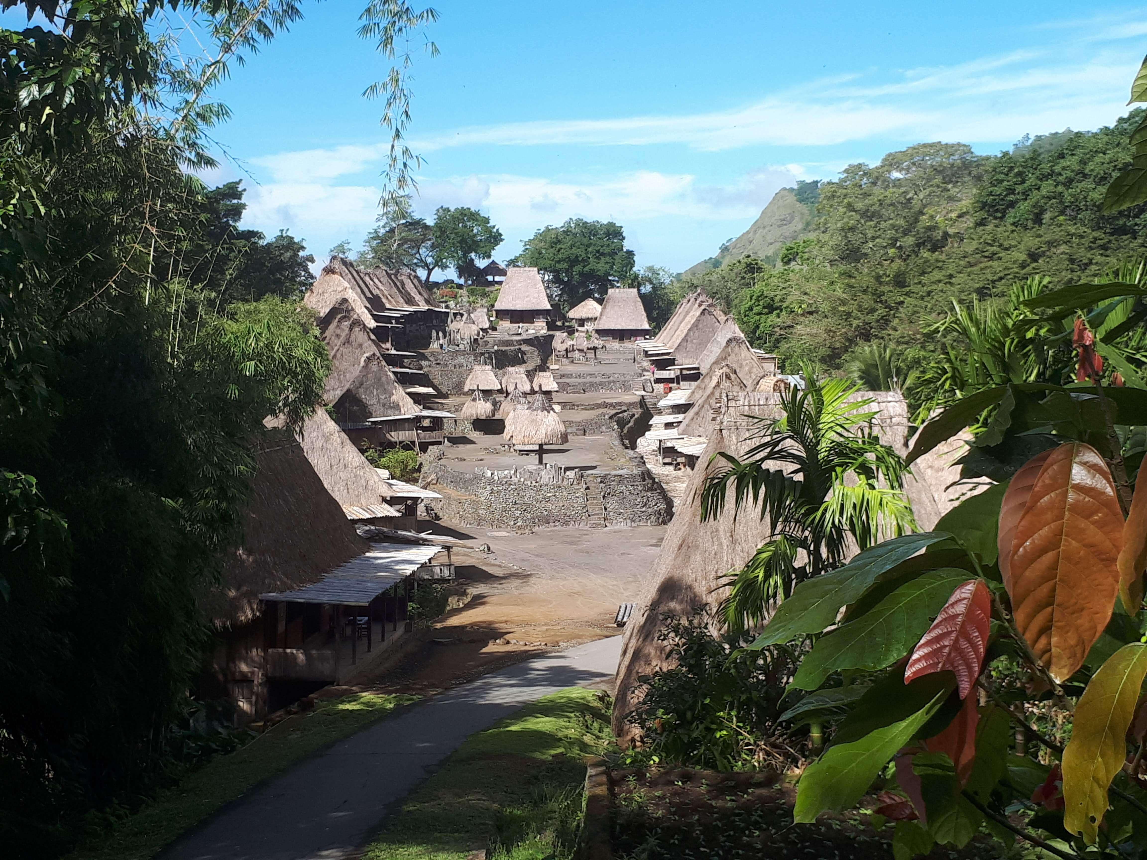 Flores -Bena Village Traditionnel
