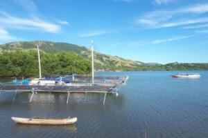 Bateau de pêcheur à Riung Flores