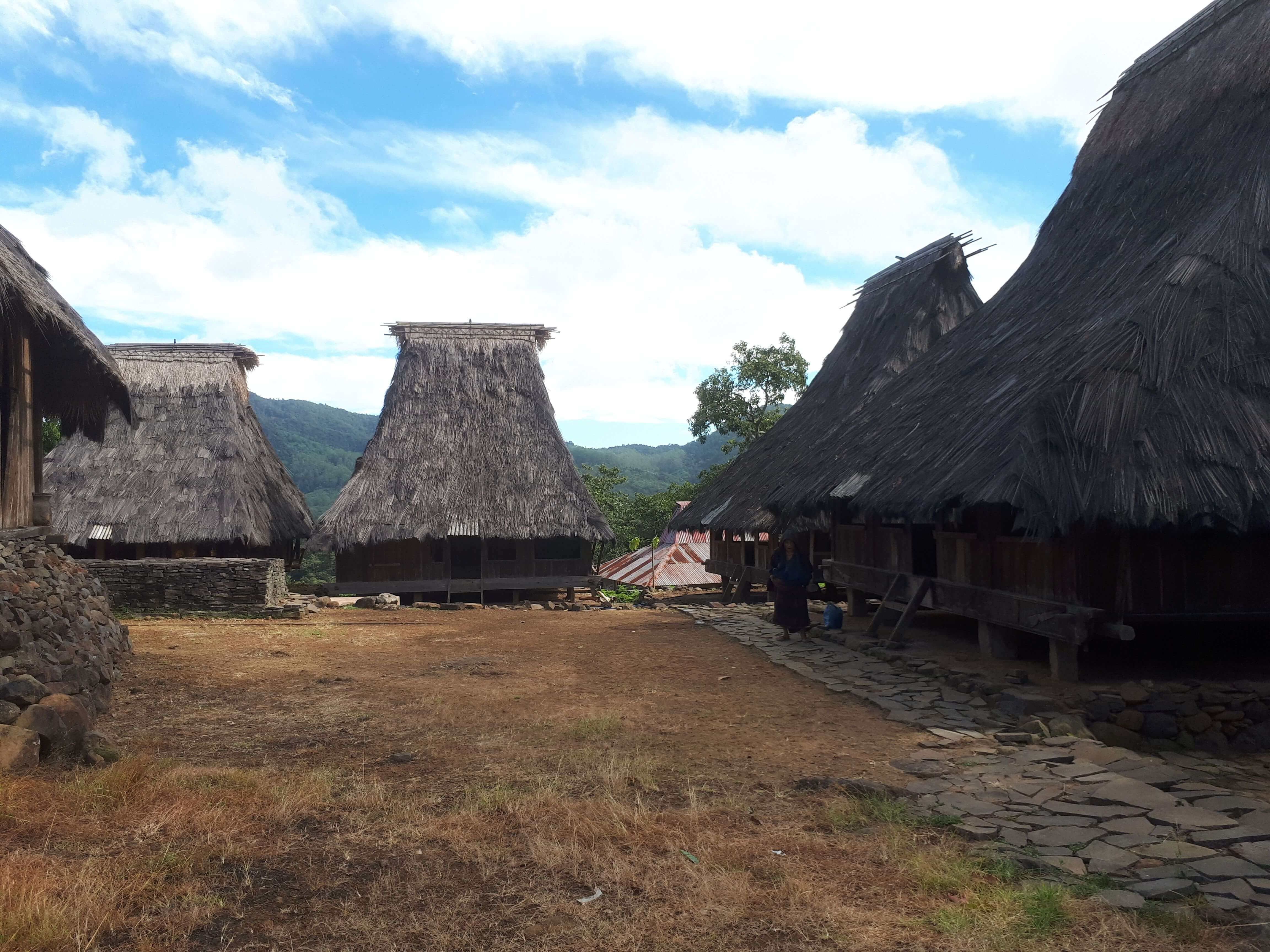 Village traditionnel à Flores