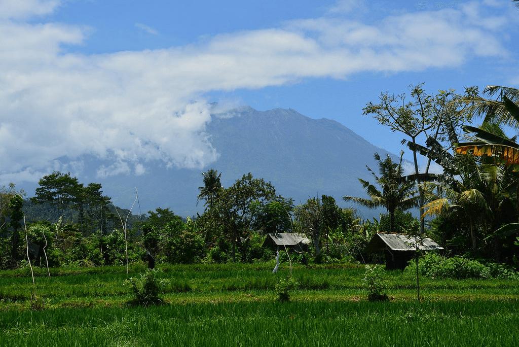 Vue sur le volcan Agung de Sidemen