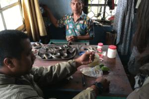 Sumatra Koto Gadang
