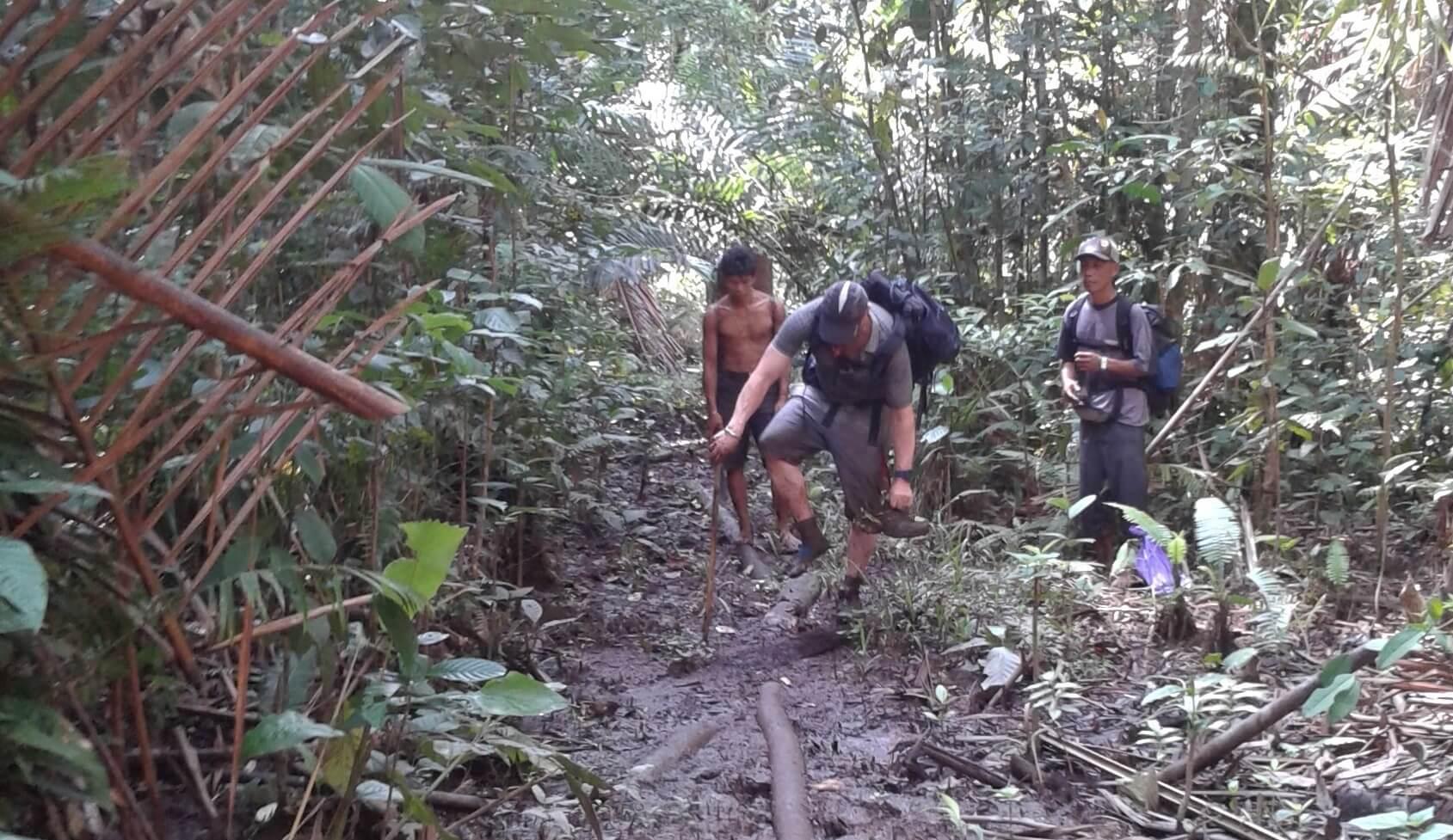 Trekking dans la jungle de Siberut Mentawai Sumatra