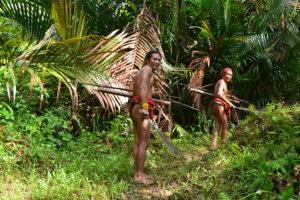 randonnee dans la jungle de siberut
