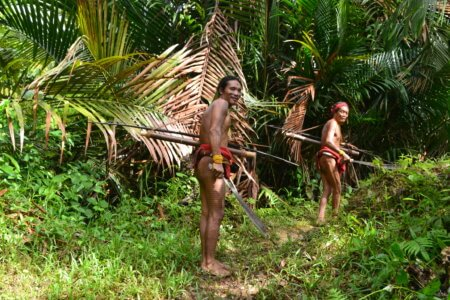 randonnee dans la jungle de siberut