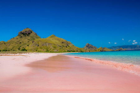Plage rose à Lombok