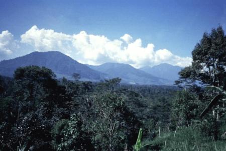 Vue sur le volcan Salak à Java