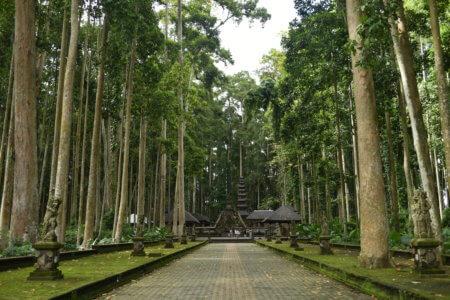 Temple au milieu de la foret des singes à Ubud